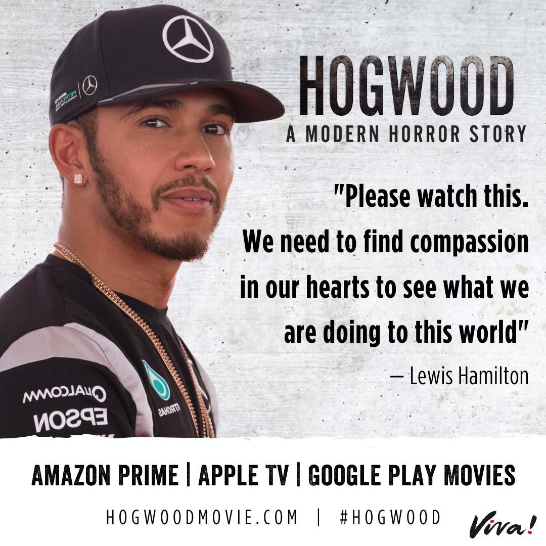 Lewis Hamilton Quote