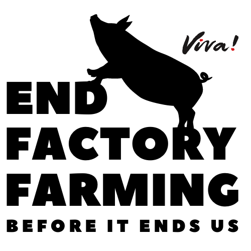 End Factory Farming Logo